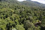Imbak Canyon -- sabah_aerial_2047