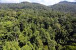 Imbak Canyon -- sabah_aerial_2049