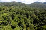 Imbak Canyon -- sabah_aerial_2050