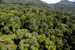 Imbak Canyon -- sabah_aerial_2053