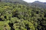 Imbak Canyon -- sabah_aerial_2054