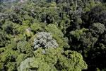 Imbak Canyon -- sabah_aerial_2056
