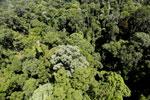 Imbak Canyon -- sabah_aerial_2057