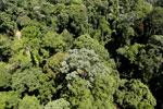 Imbak Canyon -- sabah_aerial_2059