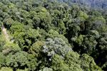 Imbak Canyon -- sabah_aerial_2061