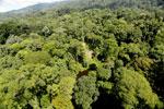 Imbak Canyon -- sabah_aerial_2063