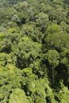 Imbak Canyon -- sabah_aerial_2067