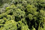 Imbak Canyon -- sabah_aerial_2069