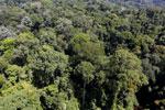 Imbak Canyon -- sabah_aerial_2070