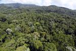 Imbak Canyon -- sabah_aerial_2074