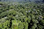 Imbak Canyon -- sabah_aerial_2080