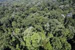 Imbak Canyon -- sabah_aerial_2081