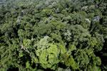 Imbak Canyon -- sabah_aerial_2082