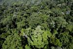 Imbak Canyon -- sabah_aerial_2085