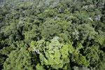 Imbak Canyon -- sabah_aerial_2086