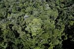 Imbak Canyon -- sabah_aerial_2094