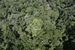 Imbak Canyon -- sabah_aerial_2095