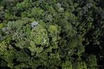 Imbak Canyon -- sabah_aerial_2099