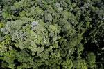Imbak Canyon -- sabah_aerial_2101
