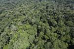 Imbak Canyon -- sabah_aerial_2103