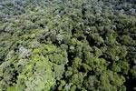 Imbak Canyon -- sabah_aerial_2104