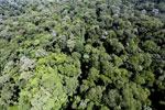 Imbak Canyon -- sabah_aerial_2105