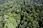 Imbak Canyon -- sabah_aerial_2107