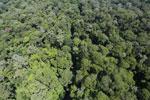 Imbak Canyon -- sabah_aerial_2108