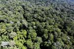Imbak Canyon -- sabah_aerial_2109