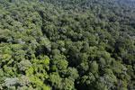 Imbak Canyon -- sabah_aerial_2110