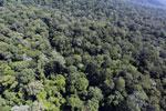 Imbak Canyon -- sabah_aerial_2111