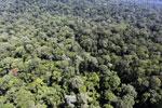 Imbak Canyon -- sabah_aerial_2112