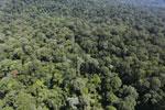 Imbak Canyon -- sabah_aerial_2113