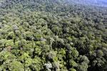 Imbak Canyon -- sabah_aerial_2114