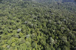 Imbak Canyon -- sabah_aerial_2117