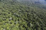 Imbak Canyon -- sabah_aerial_2119