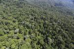 Imbak Canyon -- sabah_aerial_2120