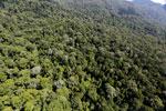 Imbak Canyon -- sabah_aerial_2121