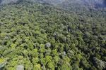 Imbak Canyon -- sabah_aerial_2122