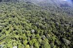 Imbak Canyon -- sabah_aerial_2124
