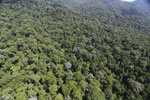 Imbak Canyon -- sabah_aerial_2125