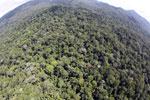 Imbak Canyon -- sabah_aerial_2128