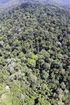 Imbak Canyon -- sabah_aerial_2129