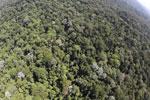 Imbak Canyon -- sabah_aerial_2132