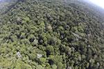 Imbak Canyon -- sabah_aerial_2133