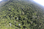Imbak Canyon -- sabah_aerial_2134