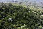Imbak Canyon -- sabah_aerial_2141