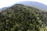 Imbak Canyon -- sabah_aerial_2148