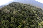 Imbak Canyon -- sabah_aerial_2149