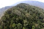 Imbak Canyon -- sabah_aerial_2150